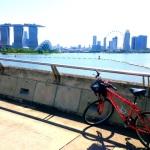 シンガポールでサイクリングをしてみる