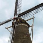 オランダの海とサマータイムの魅力