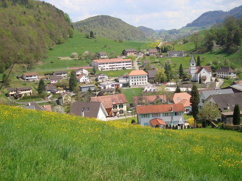 スイス留学