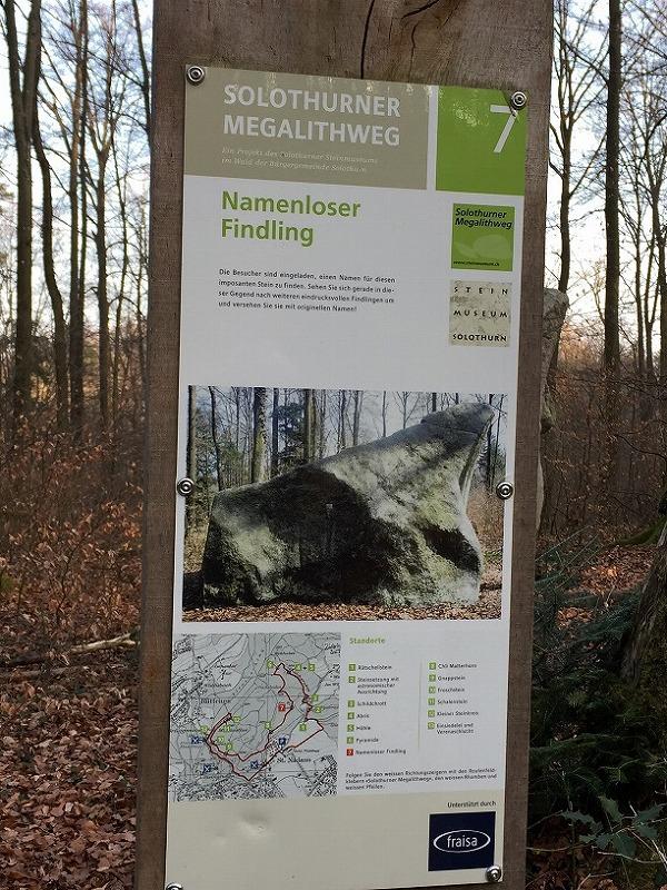 ハイキングコースとして森の中を歩きながら様々な巨石を見て回ることができるのは結構ワクワクします。