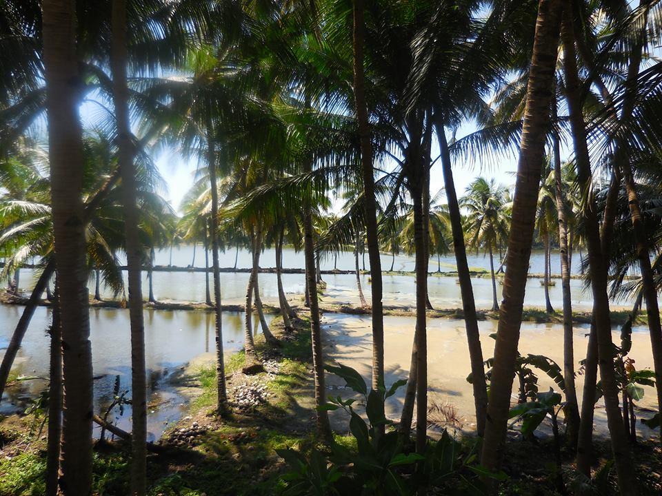 フィリピンおすすめの場所〜セブ島_1